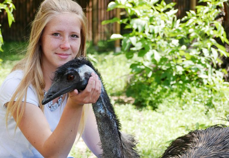 Emu Hilde im Zoo Hoyerswerda